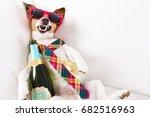 drunk jack russell terrier dog... | Shutterstock . vector #682516963