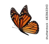 beautiful colorful monarch... | Shutterstock . vector #682863343
