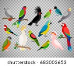 tropical parrot set with... | Shutterstock .eps vector #683003653