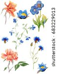 hand painted watercolor flowers ... | Shutterstock . vector #683229013