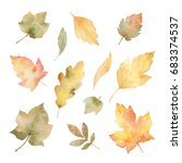 watercolor autumn set of leaves ... | Shutterstock . vector #683374537
