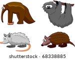 set animals of opossum ... | Shutterstock .eps vector #68338885