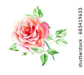 one pink rose. watercolor... | Shutterstock . vector #683419633