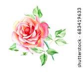 one pink rose. watercolor... | Shutterstock . vector #683419633