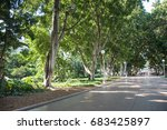 hyde park with fig trees ... | Shutterstock . vector #683425897