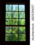 Small photo of Antique Glass Window Silhouette (Summer Day) - focus is on one clear pane where the leaves are in sharp focus and the rest of the panes are blurry.
