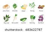 organic nature health vegetable ... | Shutterstock .eps vector #683622787