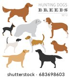 hunting dog breeds collection... | Shutterstock .eps vector #683698603