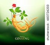 ginseng premium vector | Shutterstock .eps vector #683726203