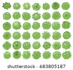 various green trees  bushes and ... | Shutterstock .eps vector #683805187