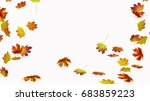 fall leaves on white background   Shutterstock . vector #683859223