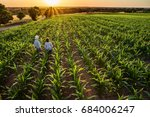 top view. a farmer and his wife ... | Shutterstock . vector #684006247