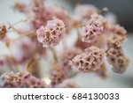 fake pink flowers and made of... | Shutterstock . vector #684130033
