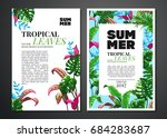 tropical palm leaves background....   Shutterstock .eps vector #684283687