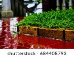 the grass   brick and tiles | Shutterstock . vector #684408793