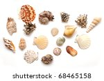 seashell collection isolated on ... | Shutterstock . vector #68465158