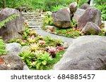 Bromeliad In Stone Garden