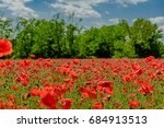 red poppy fields | Shutterstock . vector #684913513