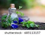 butterfly blue pea flower in... | Shutterstock . vector #685113157