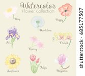watercolor flowers collection   ... | Shutterstock .eps vector #685177507