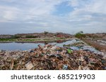 brid eat food on a garbage dump ... | Shutterstock . vector #685219903