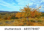 Fall Colors At The Orchard  ...