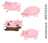 vector set of cute pigs on... | Shutterstock .eps vector #685702543