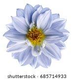 light blue flower on  isolated... | Shutterstock . vector #685714933