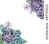 succulents painted with... | Shutterstock . vector #685745323