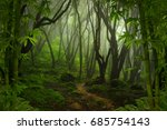tropical jungle | Shutterstock . vector #685754143