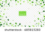 summer sale banner with... | Shutterstock .eps vector #685815283