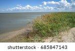 sea beach and grass | Shutterstock . vector #685847143