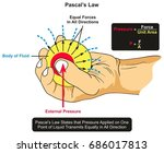 pascal s law infographic... | Shutterstock .eps vector #686017813