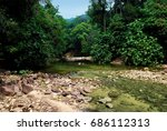 river flows in the jungle of... | Shutterstock . vector #686112313