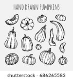 hand drawn pumpkin  autumn... | Shutterstock .eps vector #686265583