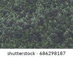 minimalist coniferous nordic...   Shutterstock . vector #686298187