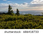 Small photo of Allegheny Mountains of eastern West Virginia during sunrise. View from Dolly Sods Wilderness, also known as Bear Rocks Nature Preserve.