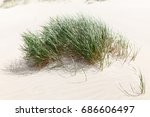 baltic sea coast near liepaja ...   Shutterstock . vector #686606497