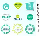 vector set of green labels and... | Shutterstock .eps vector #686651377