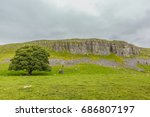 single tree in front of cliff... | Shutterstock . vector #686807197