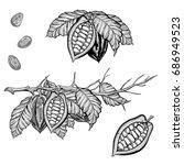 hand drawn illustration set of... | Shutterstock . vector #686949523