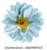 light turquoise flower on ...   Shutterstock . vector #686984923