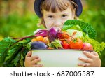 child and vegetables. selective ... | Shutterstock . vector #687005587