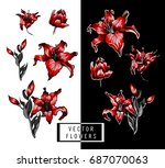 red lilies hand illustration... | Shutterstock .eps vector #687070063