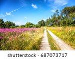 beautiful landscape. the path... | Shutterstock . vector #687073717