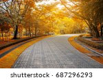 brick road in the park  along... | Shutterstock . vector #687296293