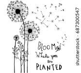 hand drawn dandelion flowers ... | Shutterstock .eps vector #687300547