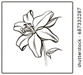 white lily isolated on a white... | Shutterstock .eps vector #687332287