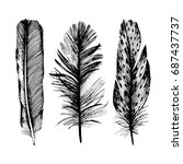 vector bird feather from wing...   Shutterstock .eps vector #687437737