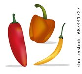 spicy chili set | Shutterstock .eps vector #687441727